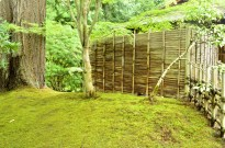 Portland's Japanese Garden, part 1 (8)
