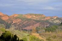 Sunday Morning Drive Near Orange (14)