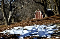oak-glen-with-snow-part-1-5