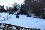 oak-glen-with-snow-part-1-9