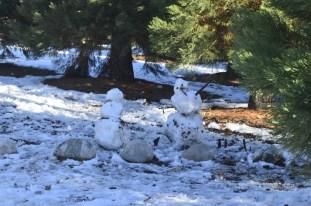 oak-glen-with-snow-part-2-8
