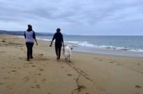 newport-beach-last-day-2016-4