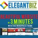 Elegant Biz WordPress Marketing Theme