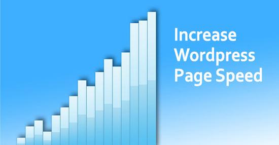 How To Improve WordPress Page Speed Score - Sue Bride