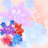 FloralCollection3