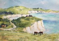 Cows on the Isle of Wight SOLD