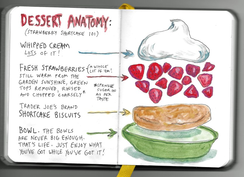 DessertAnatomy