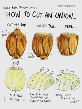 How to cut an onion (illustration for product licensing) https://roostery.com/p/spoonflower-linen-tea-towel/6323674-how-to-cut-onion-by-sueclancy