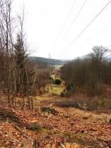 Reesberg - Blick nach Norden