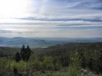 Blick vom Turmberg
