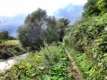Innerste Trail bei Heinde