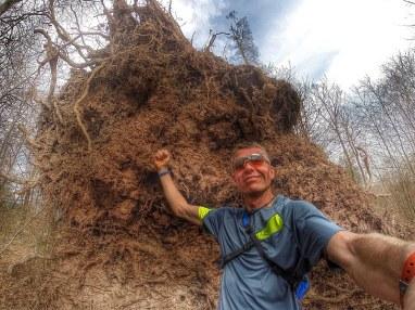 Earl, der Baumschuppser