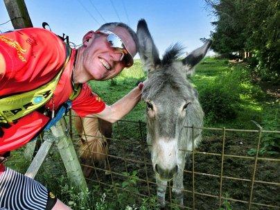 Der Esel und das Grautier :-)