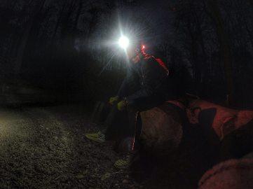 Abends im Wald :-)