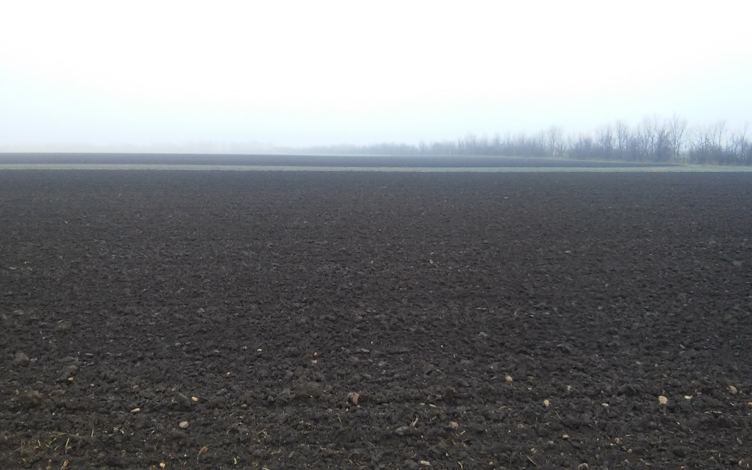 Fresh Ploughed Fields – Today's Symbol