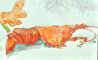 Lobster and salt, watercolor on paper 6 x 8 inches