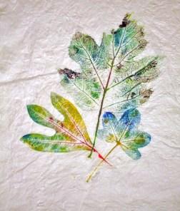 Sassafras, Gum, Oak Leaf Hydrangea, 14 x 16 inches, monoprint, 1 of 1