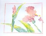 Iris 'Vanity', white line woodcut monoprint, 8 x 10 inches
