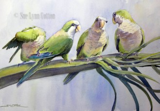Green Parrots on a Palm $99