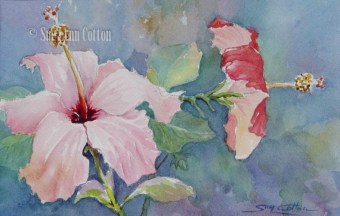 Hibiscus Morning $99