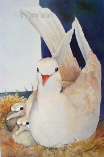 Nesting Dove $99