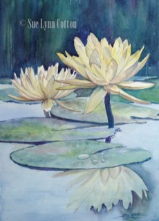 Yellow Waterlilies $99