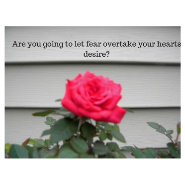 Are you going to let fear overtake your hearts desire-