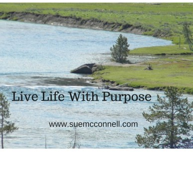 Life Life With Purpose. (2)