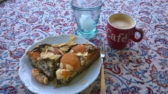Kuchen Mohn Aprikose