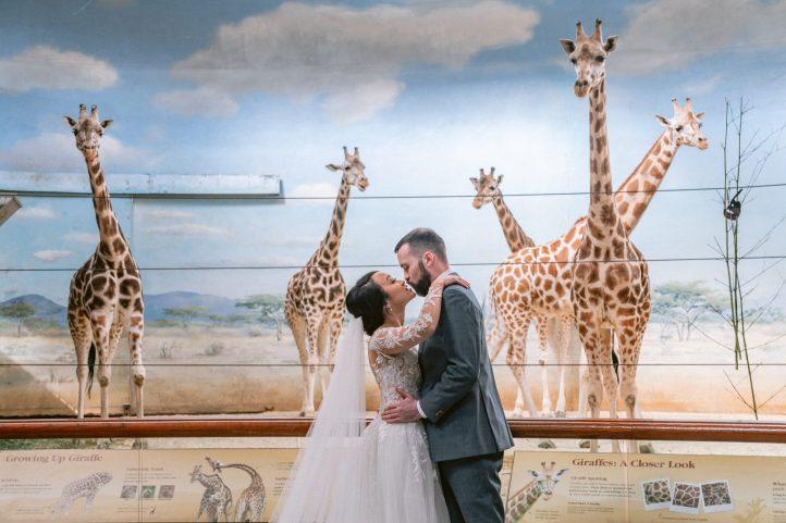 giraffe-exhibit-wedding-bronx-zoo-photography-suessmoments