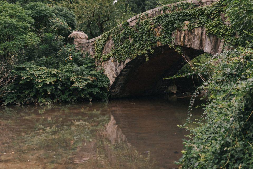 gapstow-bridge-in-summer-suessmoments-central-park-elopement