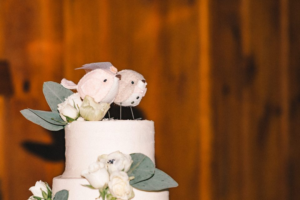 wedding-cake-with-birds-on-cake-topper-suessmoments