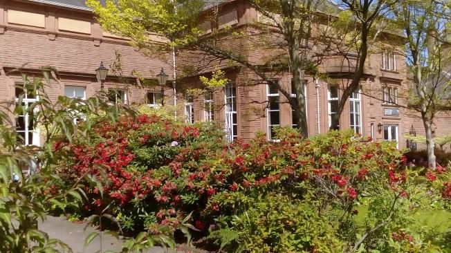 Tullie House Garden