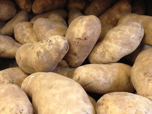 Long-Island-Potato-Festival