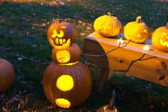 SHD_pumpkins_ss_05