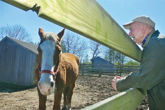 Gene Davison visits with his horse, Sudie, a Dutch warmblood. (Credit: Barbaraellen Koch)