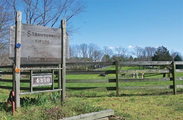 The entrance to Gene Davison's farm off Sound Avenue in Mattituck. (Credit: Barbaraellen Koch)