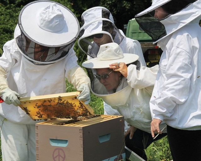 Hippy Hive HoneyBee Cooperative member Sarah Shepherd (center), who has been keeping bees for about five years, takes a good look at what is happening inside a hive, explaining to other members what's happening. (Credit: Carrie Miller)