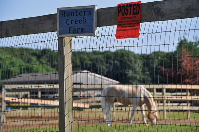 The Hunter's Creek location on Bergen Avenue in Mattituck, already in operation, is run by horse trainers Salvatore Gandolfo Jr. and Danielle Gandolfo. They are now looking to lease property and operate a Main Road horse farm, also in Mattituck, being planned by Showalter Farms LLC. (Credit: Grant Parpan)