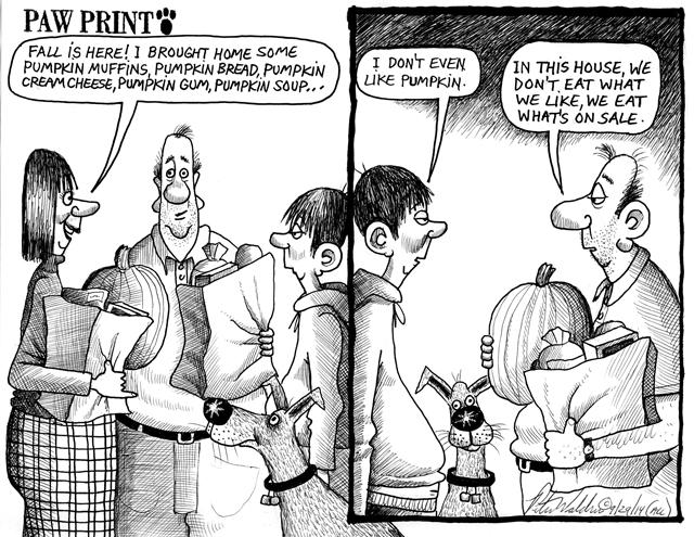 Peter Waldner cartoon