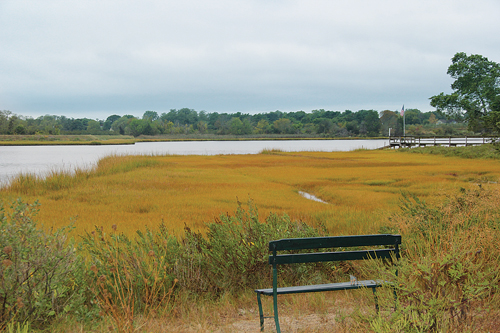 The view of Wickham Creek in Cutchogue from West Creek Avenue. The creek has been off limits to baymen since 2007. (Credit: Carrie Miller)