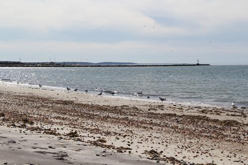 Bailie Beach in Mattituck (Credit: Carrie Miller File)