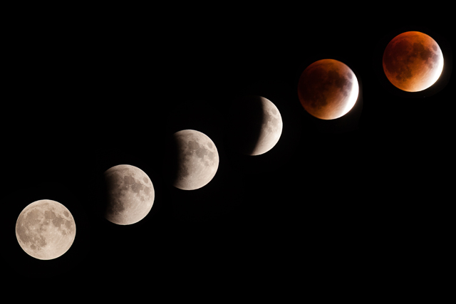 Phases of the super moon lunar eclipse over Cutchogue Sunday evening. (Credit: Katharine Schroeder)