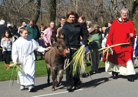 In celebration of Palm Sunday, Father Peter Garry, pastor of St. Patrick R.C. Church in Southold, leads a procession to commemorate Jesus' triumphal entry into Jerusalem on a donkey.