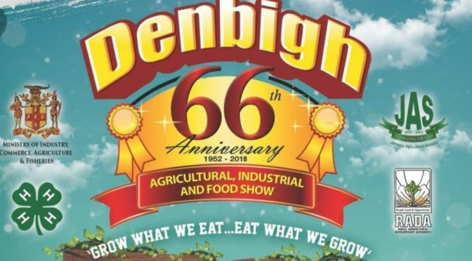 What to Expect at Denbigh 66!