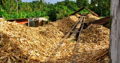 Vietnam's Sugar Mills Await Policies To Produce Electricity From Bagasse