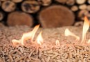Thailand to Start Wood Pellet Export to Japan in 2020