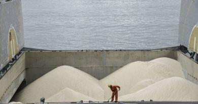 บราซิลจะตัดอัตราน้ำตาลโลกส่วนเกินทิ้งในปี 2563 ได้หรือไม่?