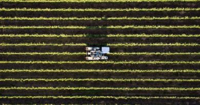 Agriculture Industry Hails Australia-UK Free Trade Agreement