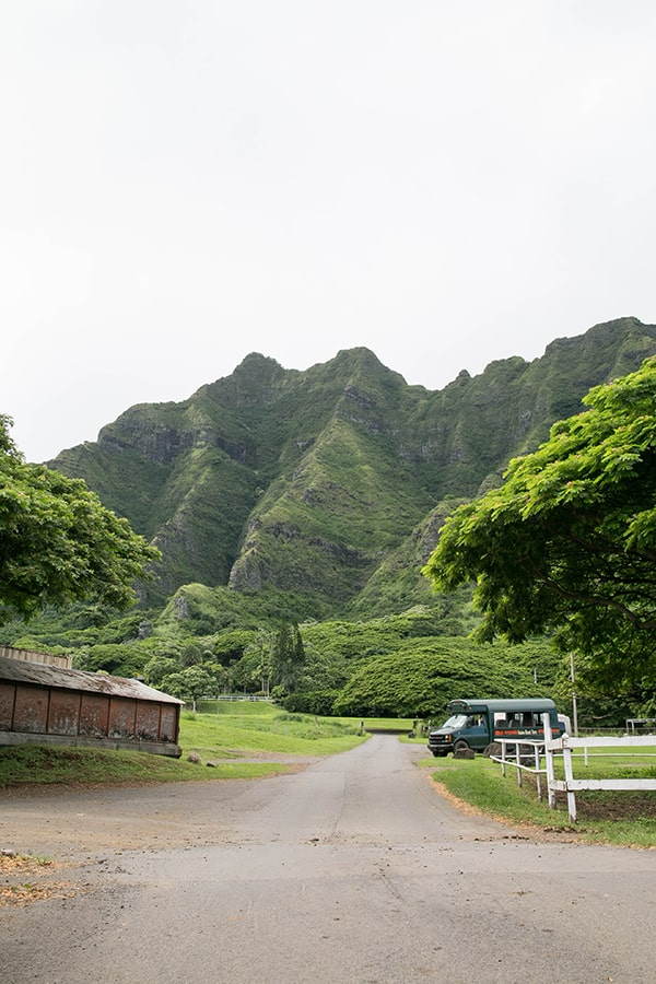 Hawaii_Oahu_19
